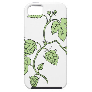 Hop Plant Climbing Drawing Case For The iPhone 5