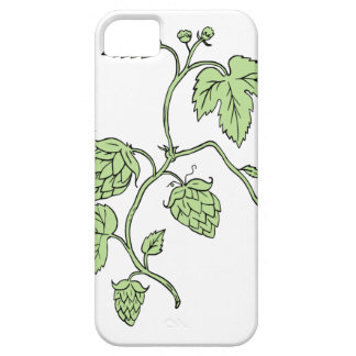 Hop Plant Climbing Drawing iPhone 5 Covers