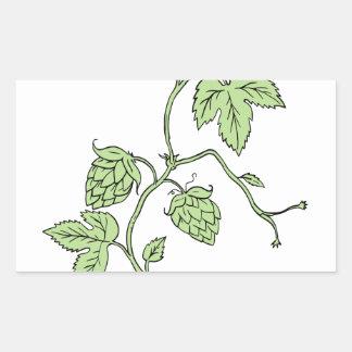 Hop Plant Climbing Drawing Rectangular Sticker