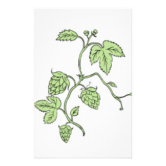 Hop Plant Climbing Drawing Stationery