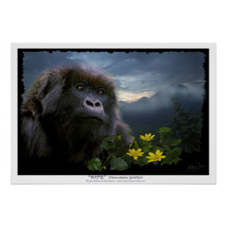"""HOPE"" Mountain Gorilla Print"