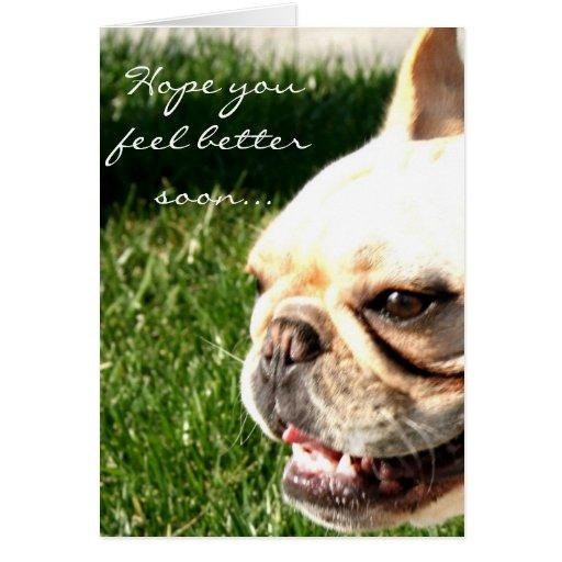 Hope you feel better soon French Bulldog card