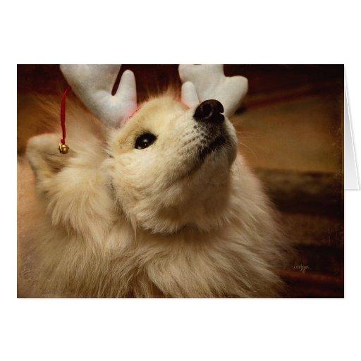 Hopeful Christmas Dog in Reindeer Ears Card