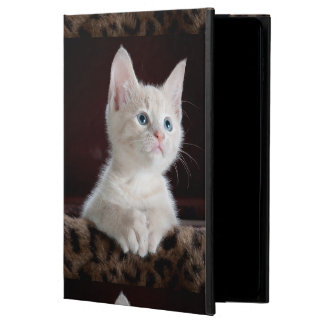 Hopeful Kitten Powis iPad Air 2 Case