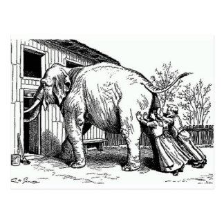 Hopeless - Elephant pushed thru small door Postcard