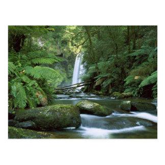 Hopetoun Falls Australia- Postcard