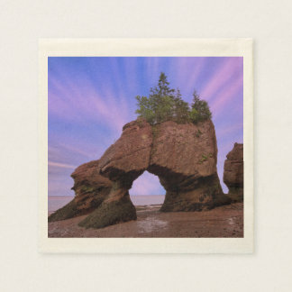 Hopewell Rocks Disposable Napkin