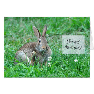 Hoppy Birthday Frameable Card