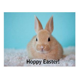 Hoppy Easter cute bunny postcard