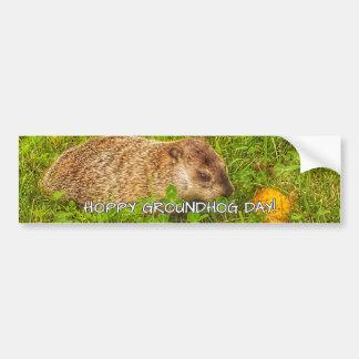 Hoppy Groundhog Day! bumper sticker