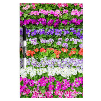 Horizontal rows of various colored flowers Dry-Erase boards
