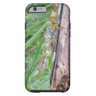 Horned Anole (Pinocchio Anole) iPhone 6 Case