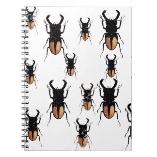 HORNED BEETLES COLLECTION NOTEBOOK