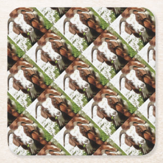 Horned Goat Grazing Square Paper Coaster