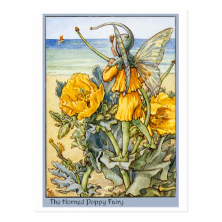 Horned Poppy  Fairy Postcard