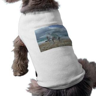 Horned Unicorn Pet Shirt