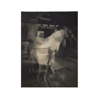 Horse 1 wood poster
