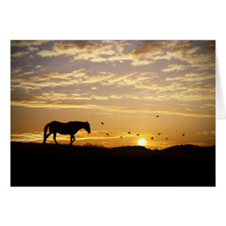 Horse and Birds Sympathy Card