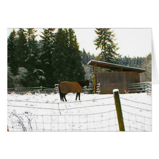 Horse and Blanket Snow Scene Card