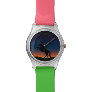 Horse Animal Nature Watch