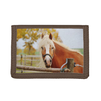 Horse At Gate Tri-fold Wallets