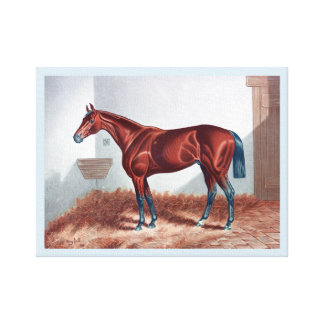 HORSE AT STABLE EATING HAY.  BROWN HORSE. CANVAS PRINT