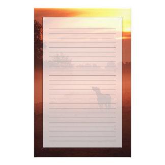 Horse at sunrise stationery
