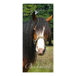 Horse beautiful photo custom name bookmark customised rack card