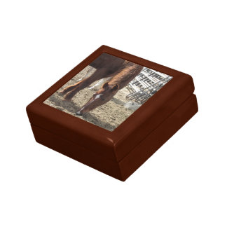 Horse Browsing Wooden Box Small Square Gift Box