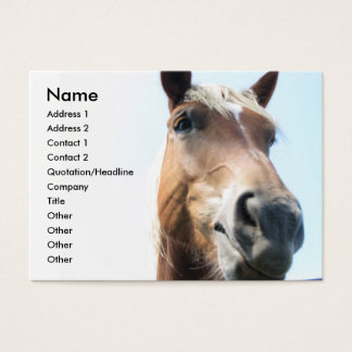 Horse Business Card