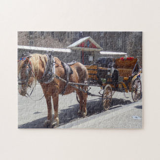 Horse Carriage Montreal. Jigsaw Puzzle