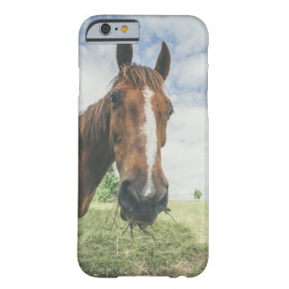 Horse chewing on grass in rural environment barely there iPhone 6 case
