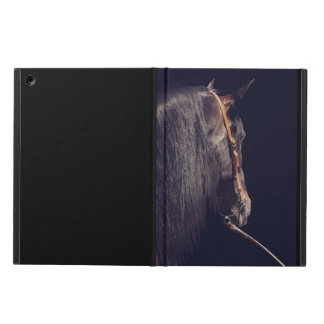 horse collection. Andalusian iPad Air Cases