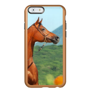 horse collection. arabian bay incipio feather® shine iPhone 6 case