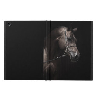 horse collection. arabian bay iPad air case