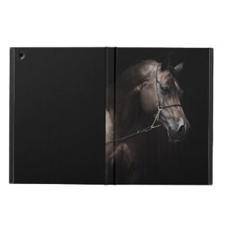 horse collection. arabian bay iPad air cover