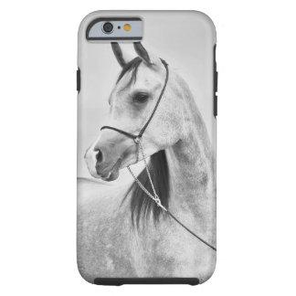 horse collection. arabian grey tough iPhone 6 case