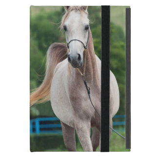 horse collection. arabian iPad mini cover