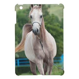 horse collection. arabian iPad mini covers
