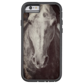 horse collection. arabian tough xtreme iPhone 6 case