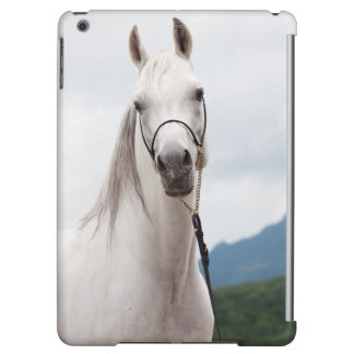 horse collection. arabian white