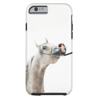 horse collection. arabian white tough iPhone 6 case
