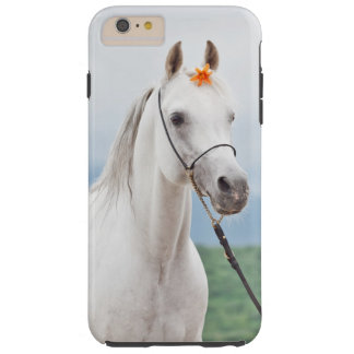 horse collection. arabian white tough iPhone 6 plus case