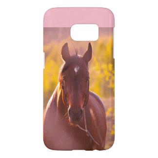 horse collection. autumn