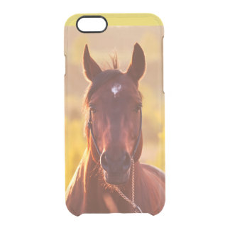 horse collection. autumn clear iPhone 6/6S case
