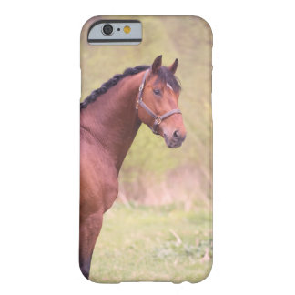 horse collection. sportive barely there iPhone 6 case