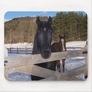 HORSE COUNTRY MOUSE PAD