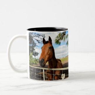 Horse_Delights,_Two_Toned_Coffee_Mug. Two-Tone Coffee Mug