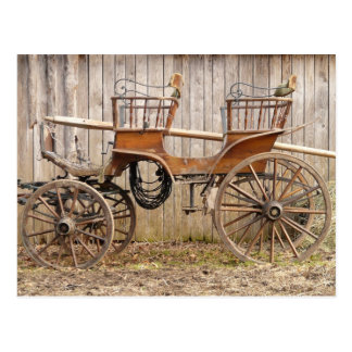 Horse Drawn Carriage Coach Surrey Gifts Postcard