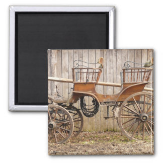 Horse Drawn Carriage Coach Surrey Square Magnet